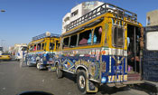 Painted buses